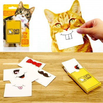 Cats snap, cartes selfie pour chats