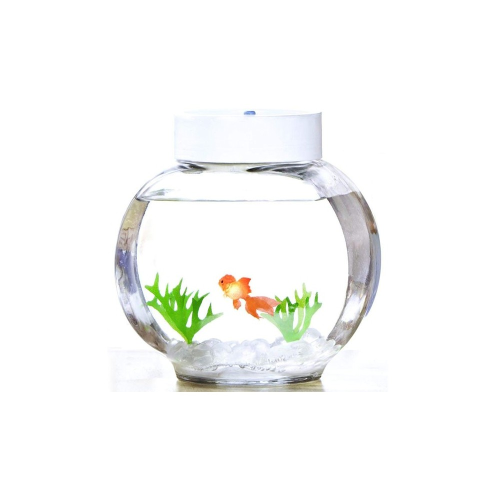 Aquarium magique poisson rouge 33 90 for Aquarium poisson rouge nettoyage